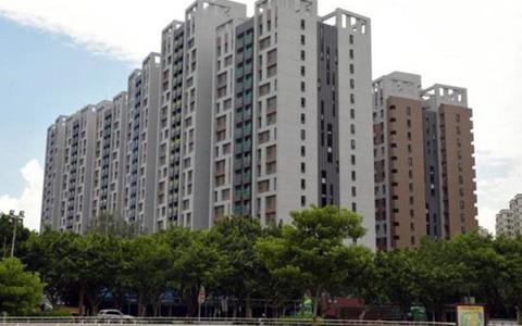 台湾业者质疑台当局包租代管政策是花大钱买政绩