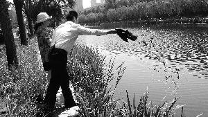 北京亮马河北岸放生南岸捞 有人往河里倒十几箱小龙虾.jpg