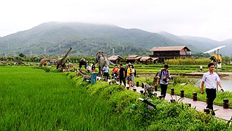 三亚海棠湾水稻国家公园.jpg